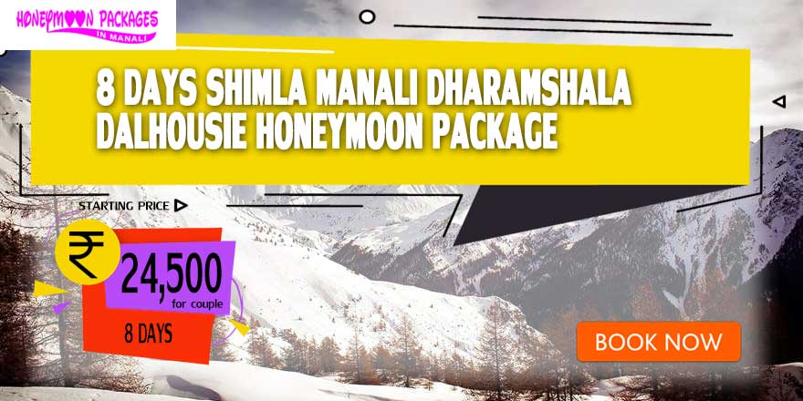 8 Days Honeymoon Packages in Manali