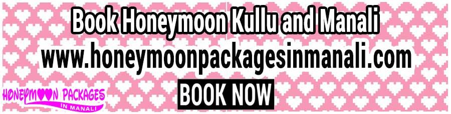 Honeymoon Kullu and Manali