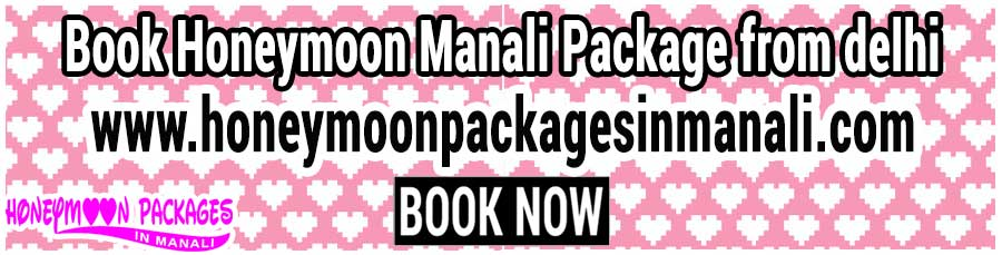 Honeymoon Manali Package from delhi