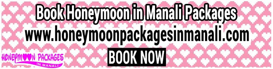 Honeymoon in Manali Packages