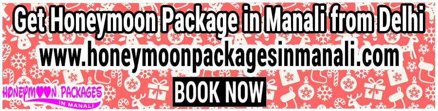 Honeymoon Package in Manali from Delhi