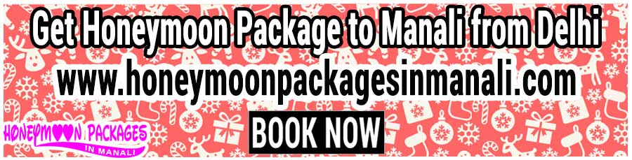 Honeymoon Package to Manali from Delhi