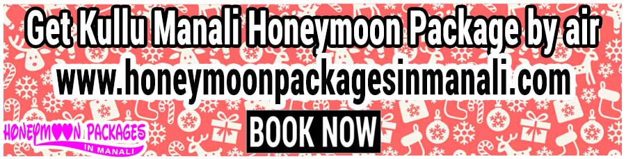 Kullu Manali Honeymoon Package by air