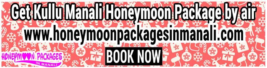 Kullu Manali Honeymoon Package by air