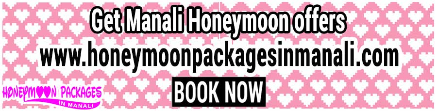 Manali Honeymoon offers
