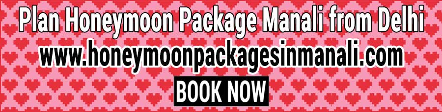 Book Honeymoon Package Manali from Delhi