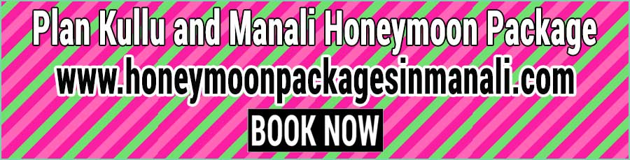 Book Kullu and Manali Honeymoon Package