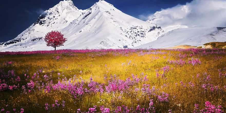 Manali tour package from Farrukhabad
