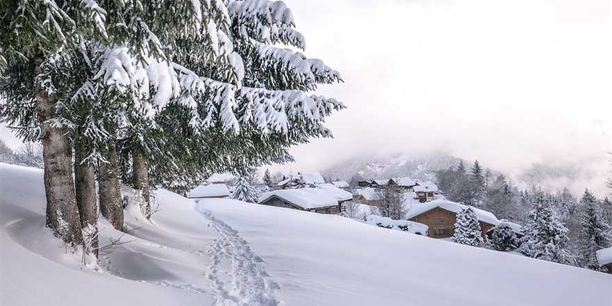 Manali tour package from Ottappalam