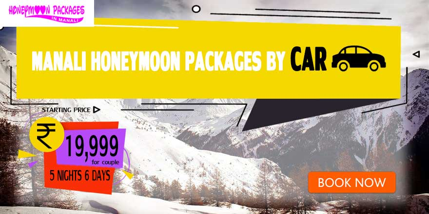 Honeymoon Packages in Manali by Car
