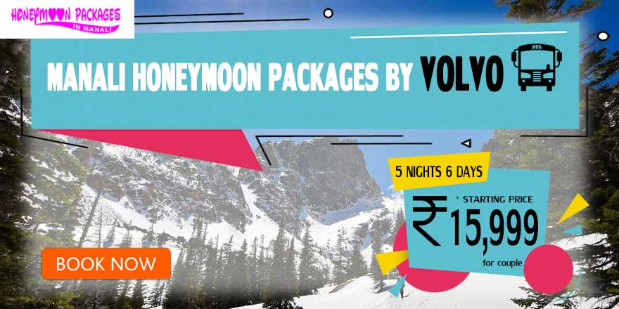 Honeymoon Packages in Manali by Volvo Bus