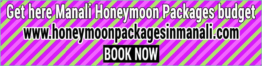Book Manali Honeymoon Packages in budget