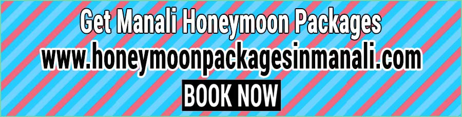 Book Manali Honeymoon Packages