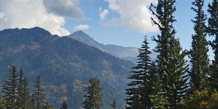Manali tour package from Alandur