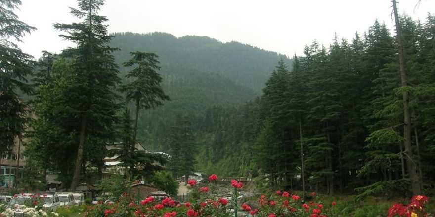 Manali couple tour package from Gaya