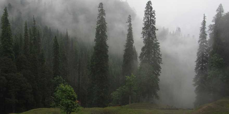Manali tour package from Katni Murwara