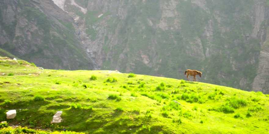 Manali tour package from Kothamangalam