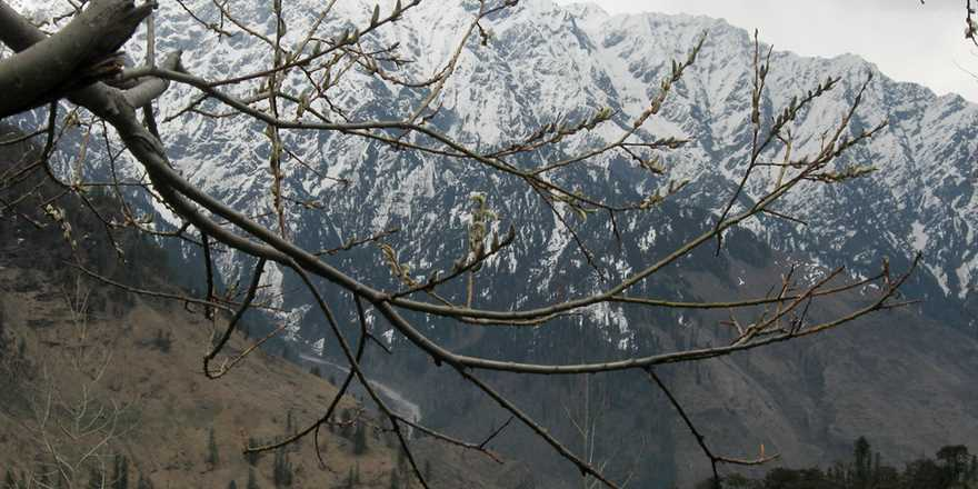Manali tour package from Neyveli