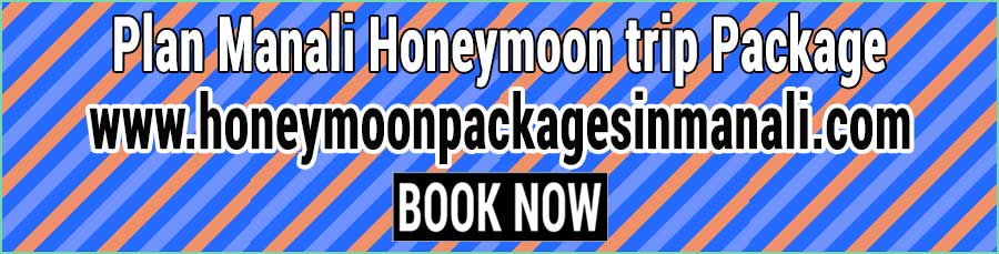Book Manali Honeymoon trip Package