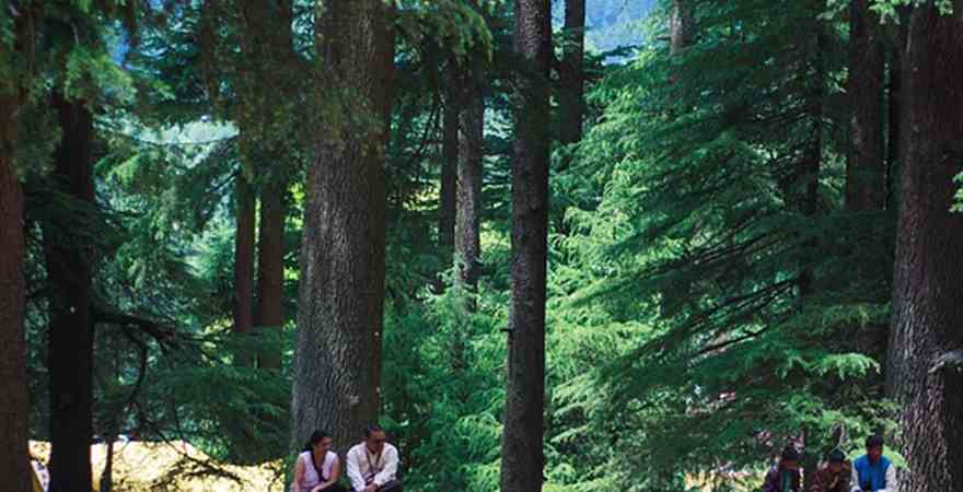 Reasons to Select Kullu Manali for Honeymoon Holidays