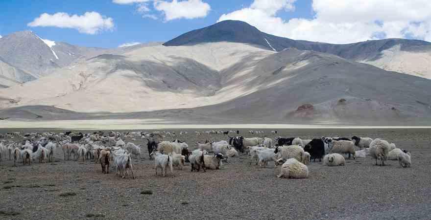 World Famous Tourist Places in Himachal Pradesh
