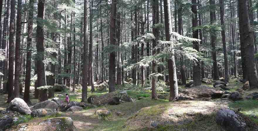 Manali Tours Vacation for Relaxing Soul, Body and Mind