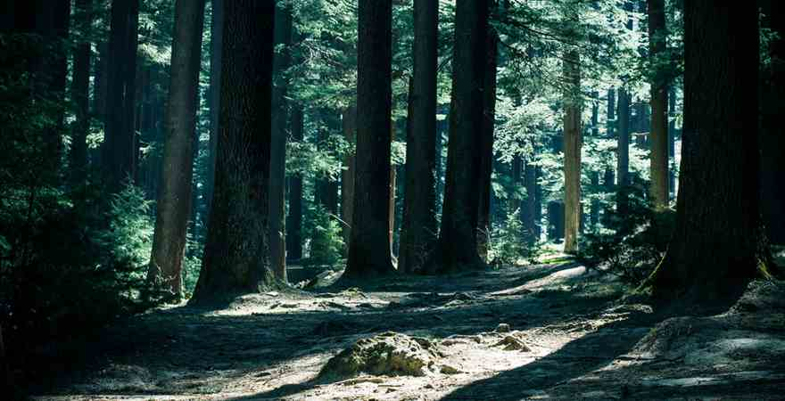 Popular Trekking Routes in Kullu-Manali