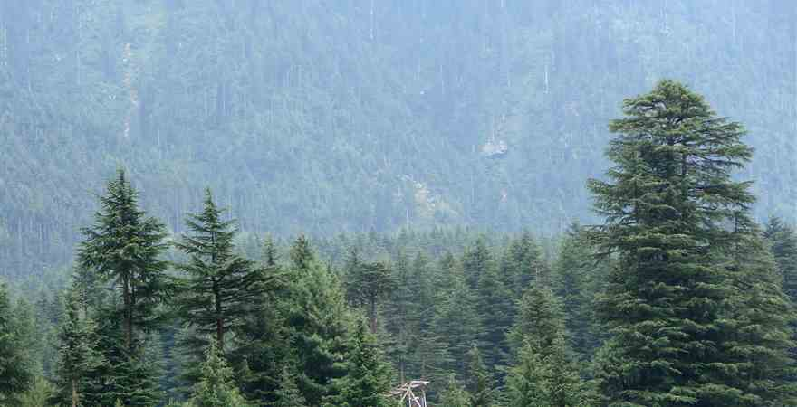 My Journey to Manali Himachal Pradesh