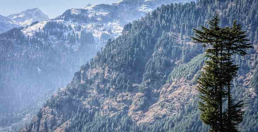 What is The Best Time to Visit Manali