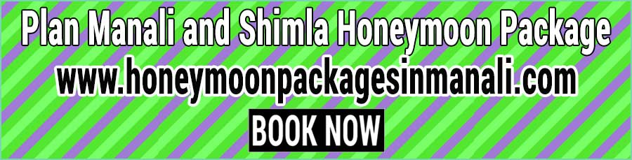 Book Manali and Shimla Honeymoon Package