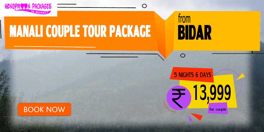 Manali couple tour package from Bidar