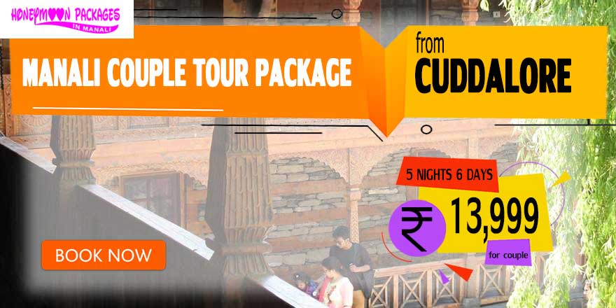 Manali couple tour package from Cuddalore