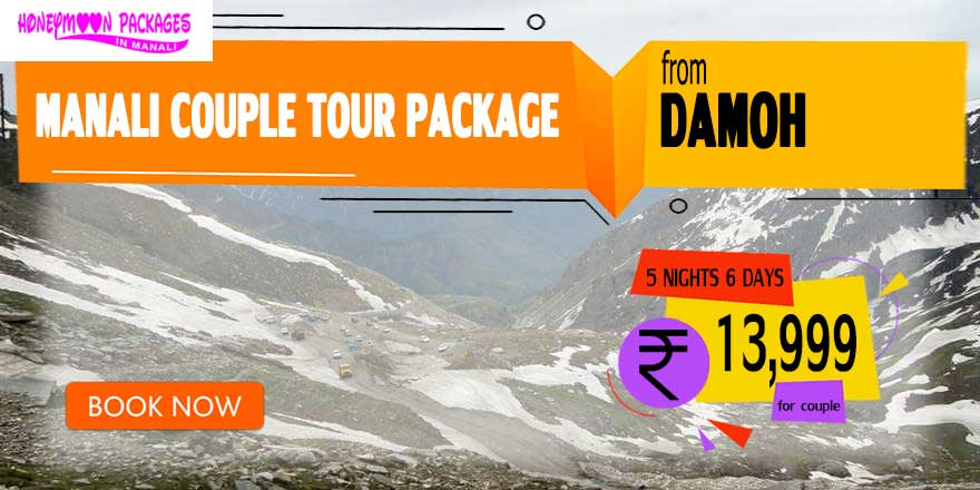 Manali couple tour package from Damoh