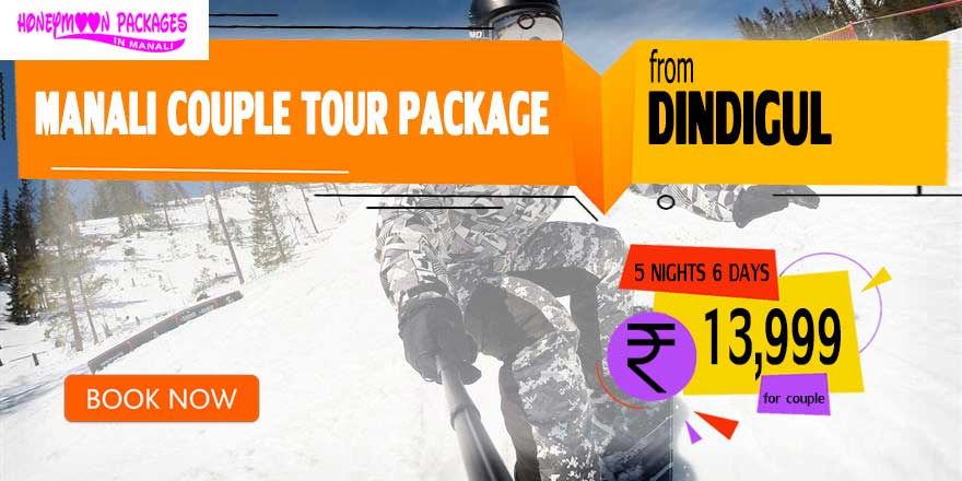 Manali couple tour package from Dindigul