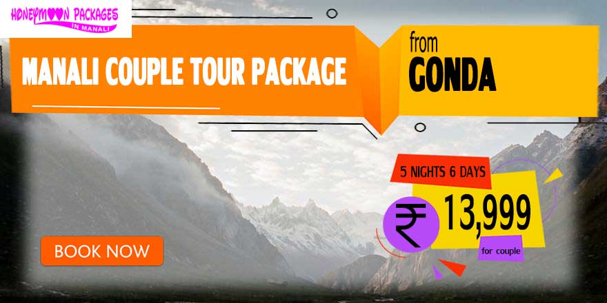 Manali couple tour package from Gonda