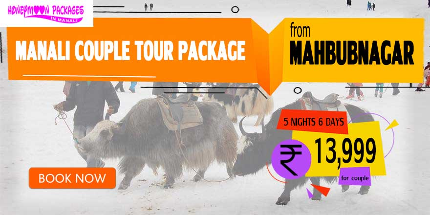 Manali couple tour package from Mahbubnagar