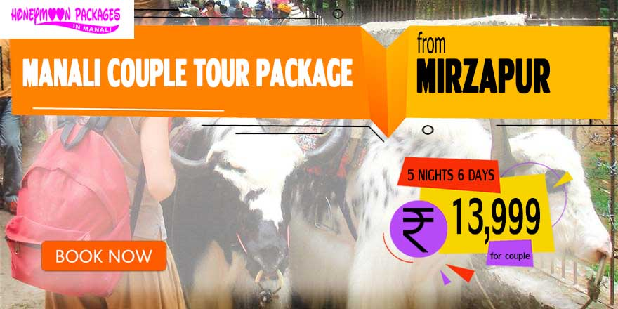 Manali couple tour package from Mirzapur