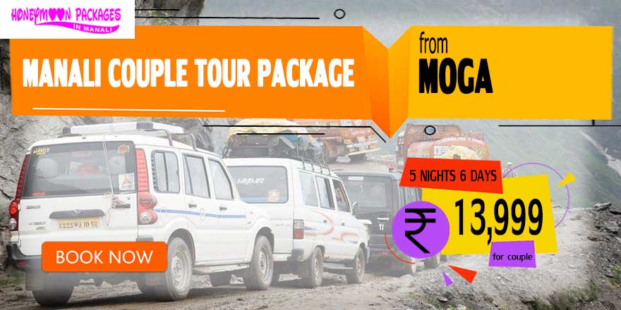 Manali couple tour package from Moga
