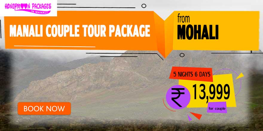 Manali couple tour package from Mohali