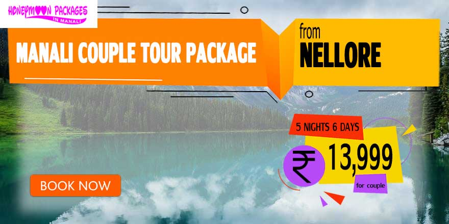 Manali couple tour package from Nellore