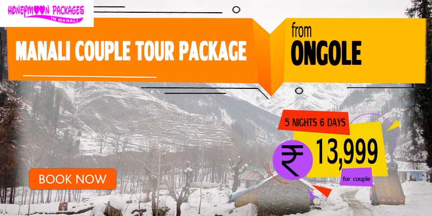 Manali couple tour package from Ongole