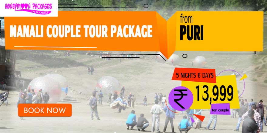 Manali couple tour package from Puri