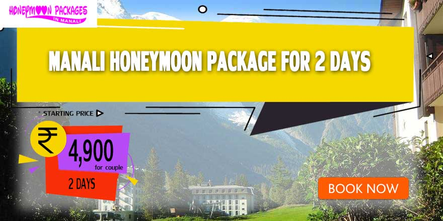 2 Days Honeymoon Packages in Manali