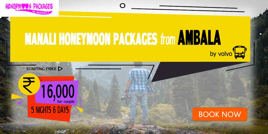 Honeymoon Packages in Manali from Ambala