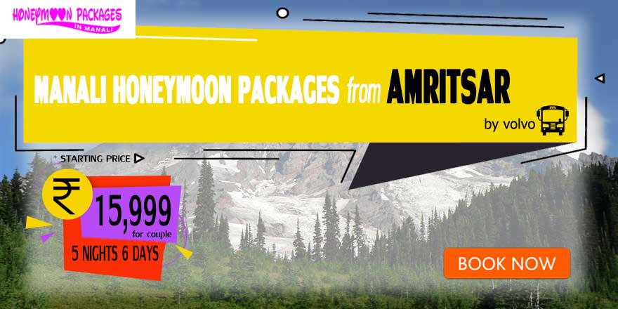 Honeymoon Packages in Manali from Amritsar