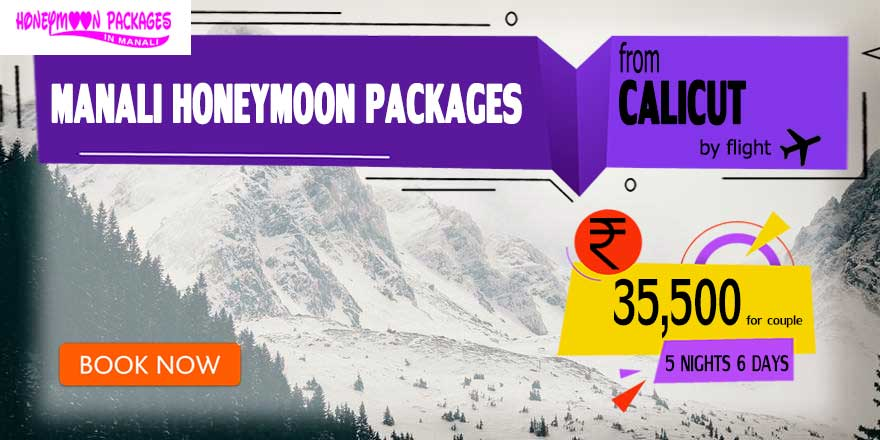 Honeymoon Packages in Manali from Calicut