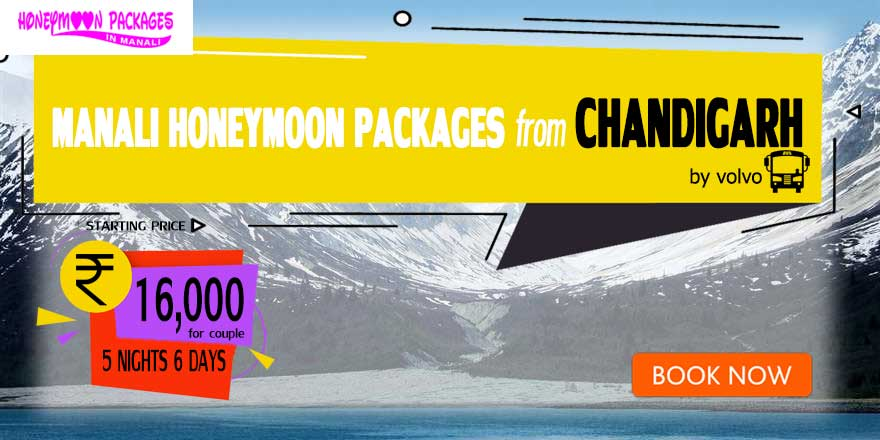 Honeymoon Packages in Manali from Chandigarh