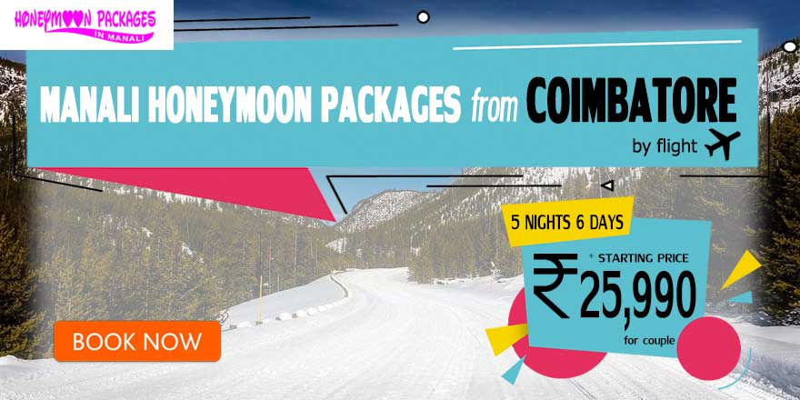 Honeymoon Packages in Manali from Coimbatore