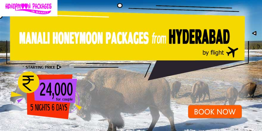 Honeymoon Packages in Manali from Hyderabad