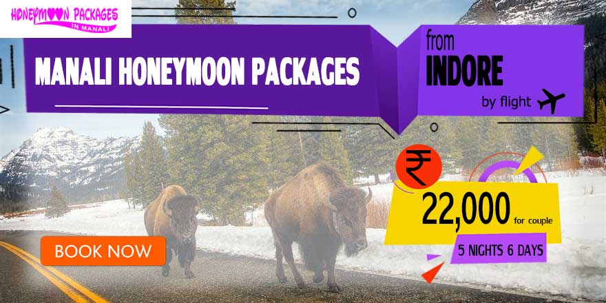 Honeymoon Packages in Manali from Indore